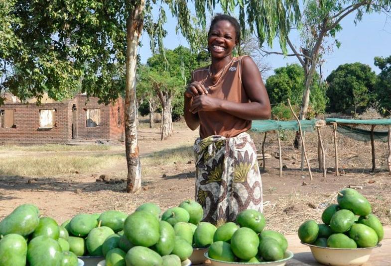 mango africano propiedades