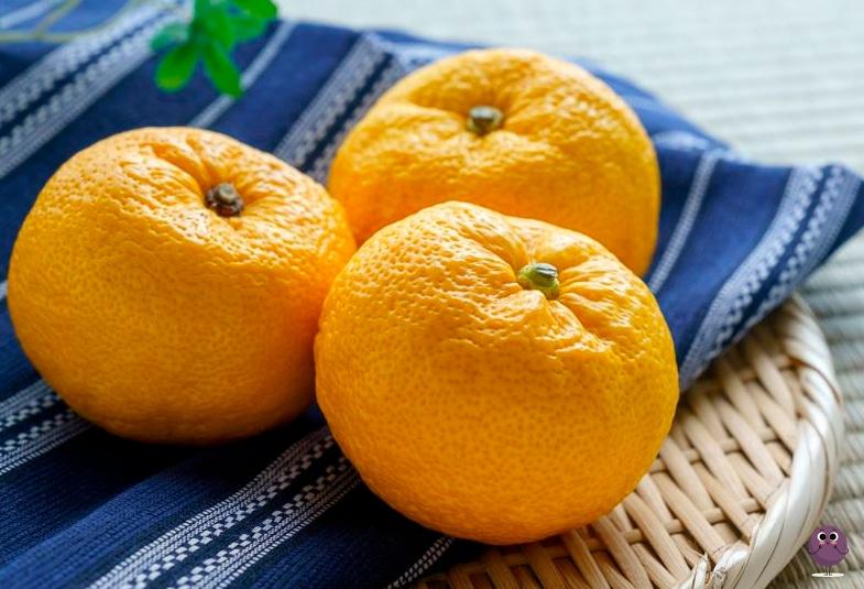 yuzu fruta beneficios
